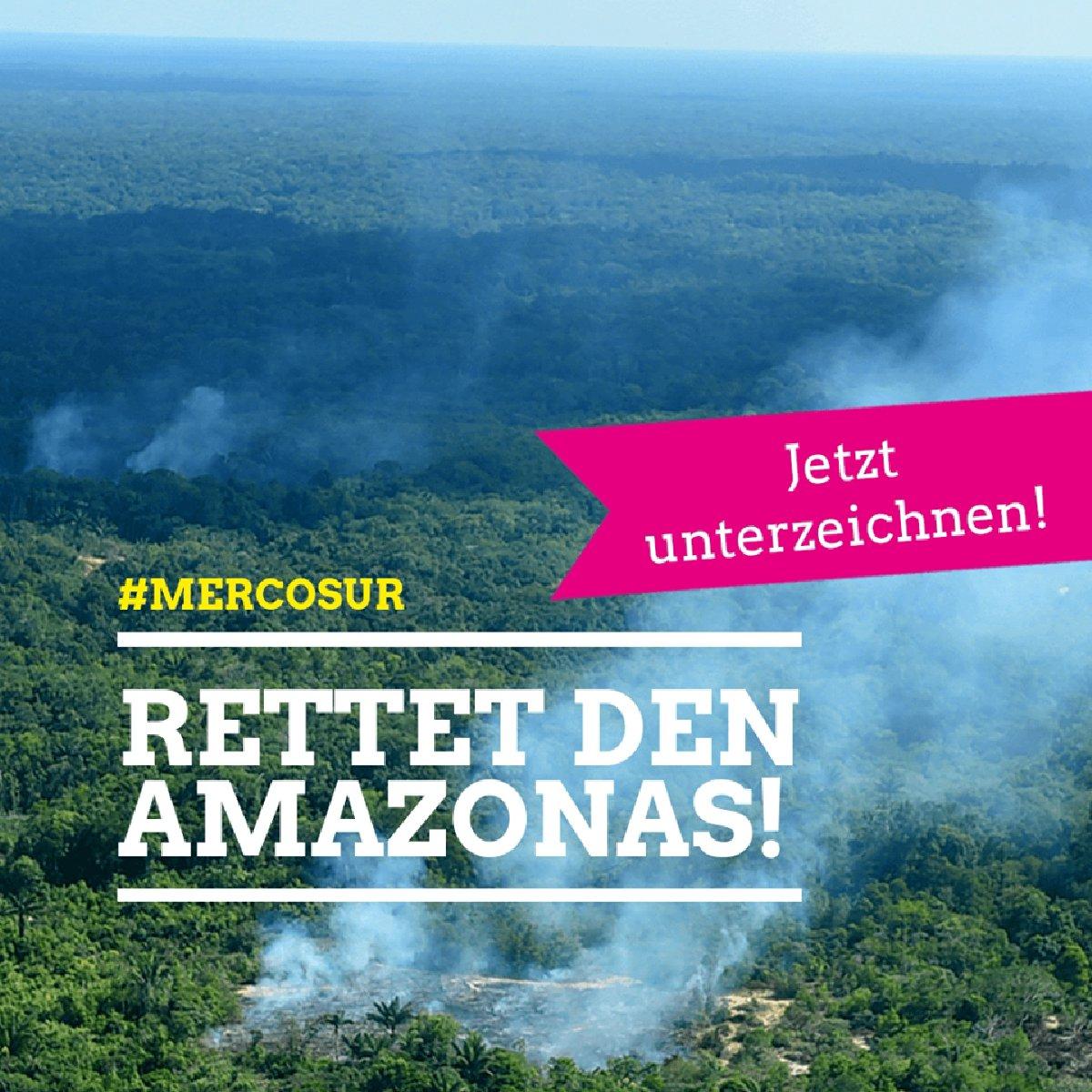 Rettet den Amazonas